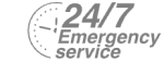 24/7 Emergency Service Pest Control in Shepperton, Upper Halliford, TW17. Call Now! 020 8166 9746