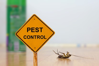 Pest Contol in Shepperton, Upper Halliford, TW17. Call Now 020 8166 9746